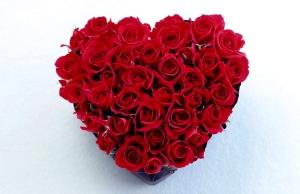 różyczki-serce